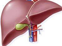 黃疸性肝炎